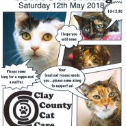 Clay County Cat Care coffee morning