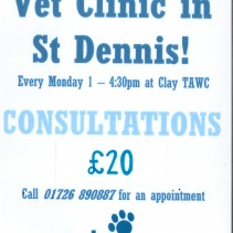 Rock View Vets Clinic