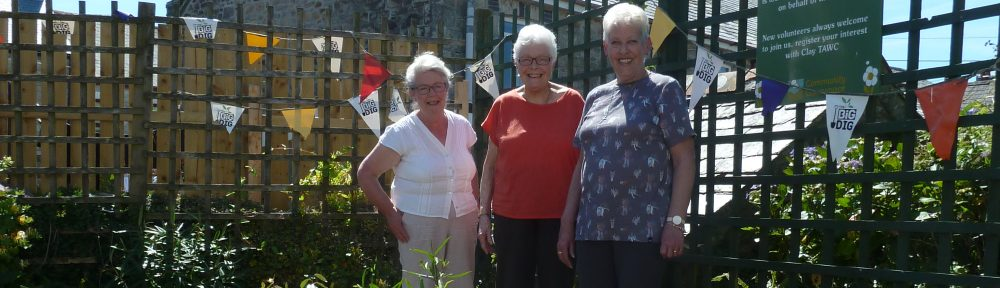 Catching up in the ClayTAWC Community Garden